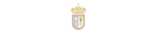 NP_SALTERAS INAUGURARÁ MAÑANA SU FERIA RINDIENDO HOMENAJE AL 25 ANIVERSARIO DEL PRIMER CAMINO DE LA HERMANDAD DEL ROCÍO