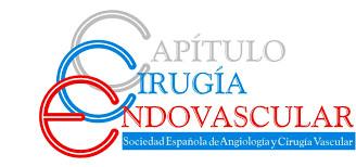 CONVOCATORIA DE PRENSA: Campaña informativa sobre las patologías vasculares y su tratamiento con técnicas endovasculares (sin cirugía abierta)