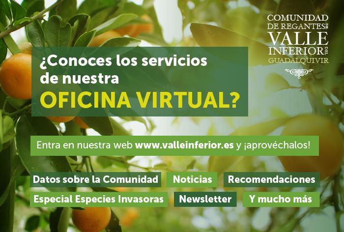 CRR Valle Inferior del Guadalquivir - ¿Conoces los servicios de nuestra oficina virtual?