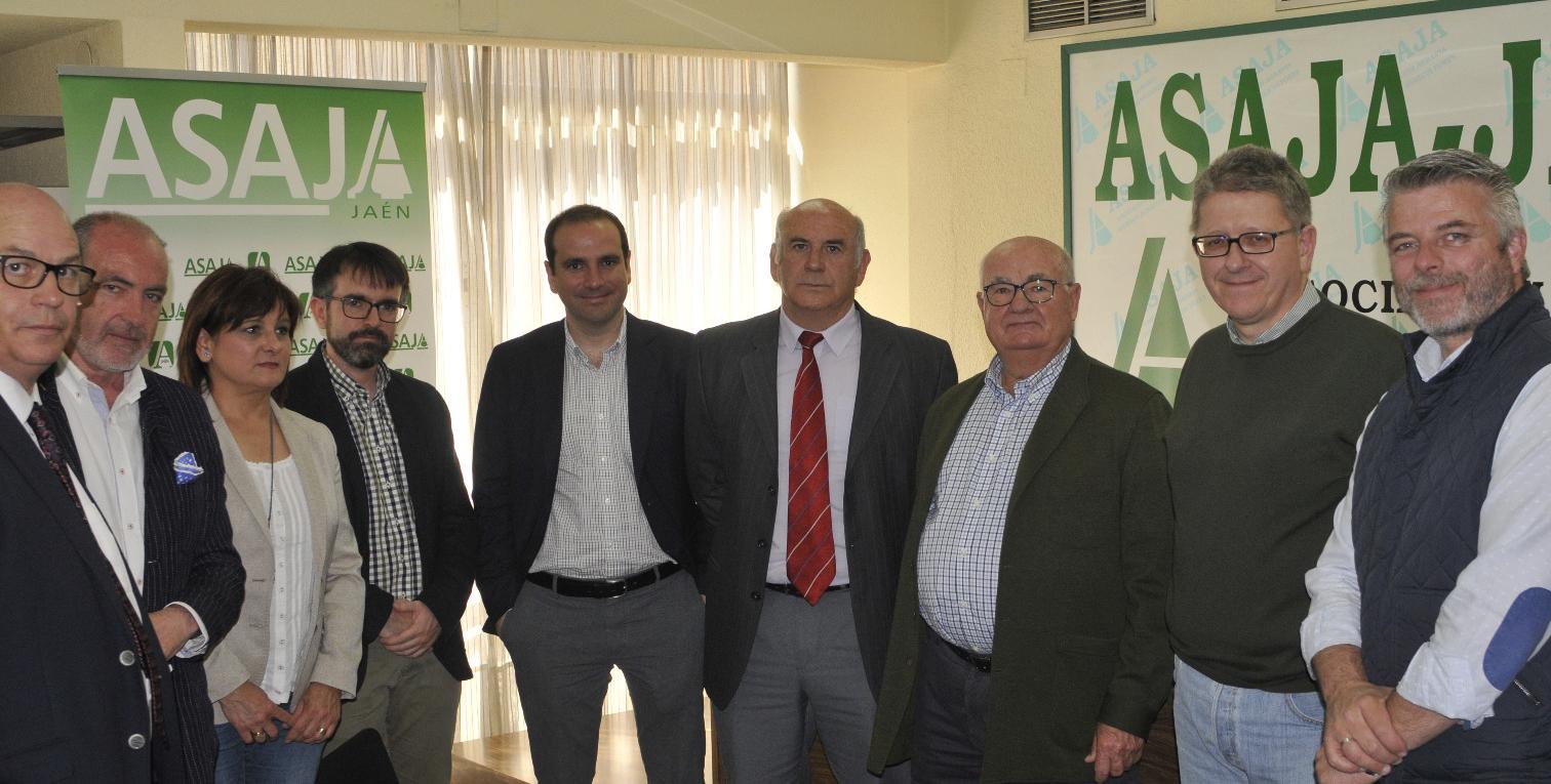 Un nuevo grupo operativo investigará durante dos años la agricultura de precisión con drones en el olivar andaluz