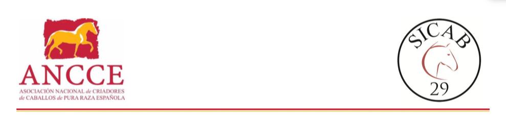 SICAB 2019: Accreditation for International Press