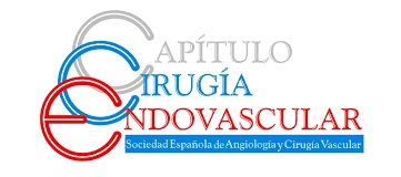 Nota de prensa: Las enfermedades vasculares son la primera causa de mortalidad femenina y representan alrededor de 127.000 fallecimientos anuales en España