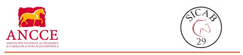 EL PRESIDENTE DE ANCCE PRESIDE EL ACTO OFICIAL DE INAUGURACIÓN DE SICAB 2019 ACOMPAÑADO DE LA PRESIDENTA DEL PARLAMENTO ANDALUZ, MARTA BOSQUET, EL DELEGADO DEL GOBIERNO CENTRAL EN ANDALUCÍA, LUCRECIO FERNÁNDEZ, Y EL TENIENTE DE ALCALDE DEL AYUNTAMIEN