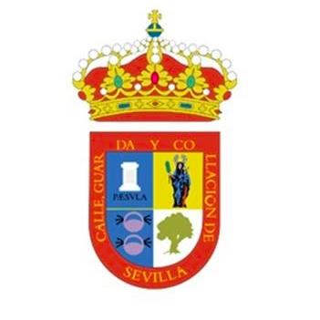 """EL ALCALDE DE SALTERAS ANUNCIA UN """"PLAN DE CHOQUE"""" DE 135.000 EUROS CONTRA LAS CONSECUENCIAS DEL COVID-19"""