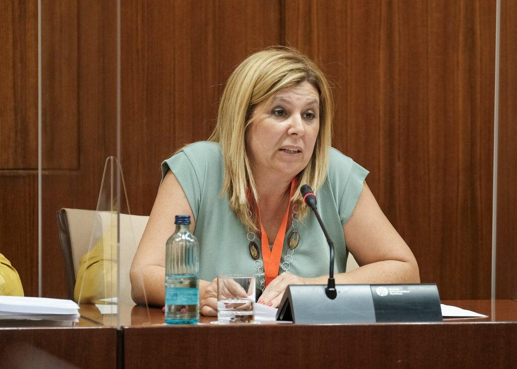 FEUSO-Andalucía reclama en el Parlamento andaluz un pacto por la educación que garantice a los padres la libertad para escoger la enseñanza que quieren para sus hijos