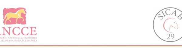 Nota de prensa: SICAB CELEBRA DEL 19 AL 24 DE NOVIEMBRE SU 29ª EDICIÓN EN SEVILLA COMO PRINCIPAL EVENTO MUNDIAL DEL CABALLO DE PURA RAZA ESPAÑOLA
