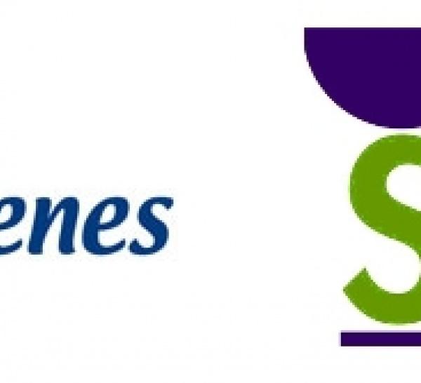 Asaenes y el Colegio de Farmacéuticos de Sevilla presentan la campaña 'Nada es imposible si sabes cómo hacerlo', dirigida a los cuidadores de personas con enfermedad mental